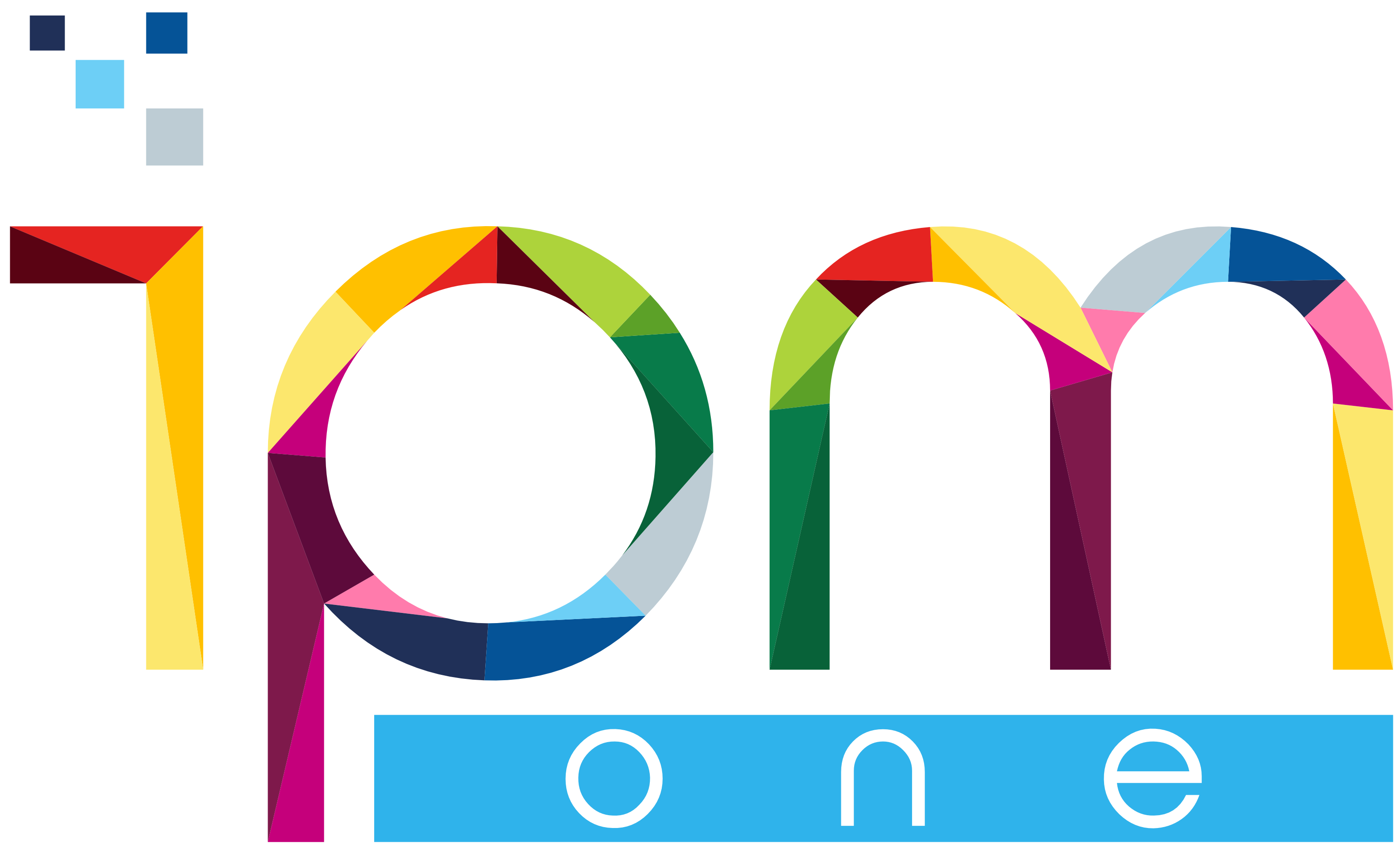 Logo ipm transparent